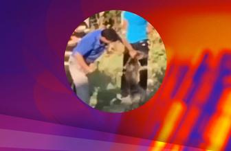 Tekirdağ'da köpeğe sopalı işkence saniye saniye kamerada