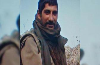 Ağrı'da etkisiz hale getirilen terörist çocuk katili çıktı