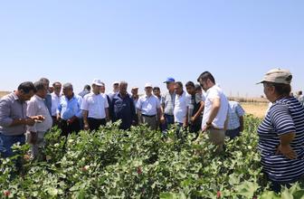 Diyarbakırlı çiftçilerin sorunları dinlendi