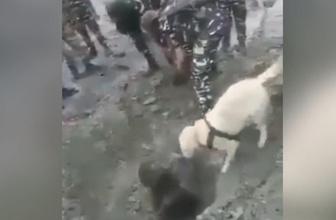 Hindistan'da heyelan oluştu bir kişi toprak altında kaldı! Bakın nasıl kurtarıldı