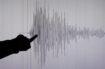 Şoke eden detay! 8 saatte 114 deprem...