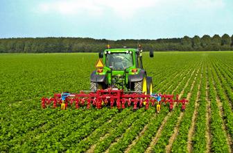 Tarım sektöründe atak! Konya üretti, İstanbul tüketti