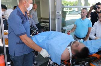 Kayseri'de kurban kesen vatandaşı arı soktu