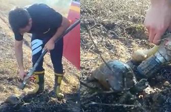 Yangından kurtarılan kaplumbağaya itfaiye müdahelesi