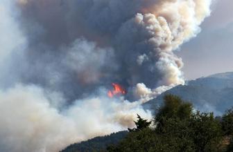 İzmir'deki korkutan yangında köy boşaltıldı