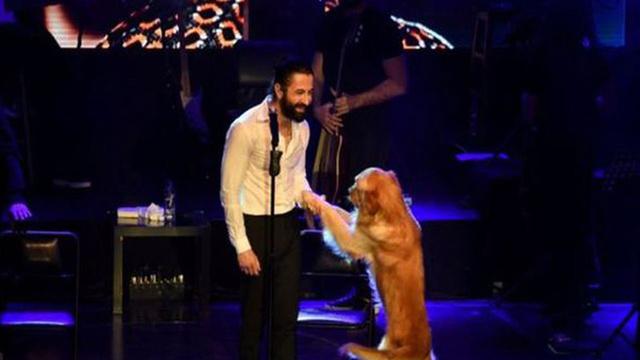 Ünlü şarkıcı köpeğiyle sahne aldı