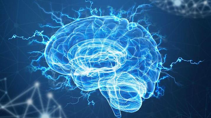 Hafızayı güçlendiren bu besinleri mutlaka tüketin