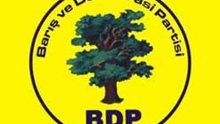 Bağımsız aday polisleri dövdü