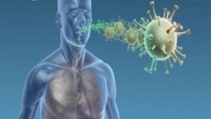 В Севастополе рассказали о коронавирусной инфекции