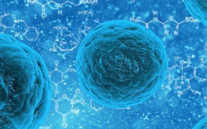 İsveçli bilim insanları yeni bir insan hücresi yapısı keşfedildi
