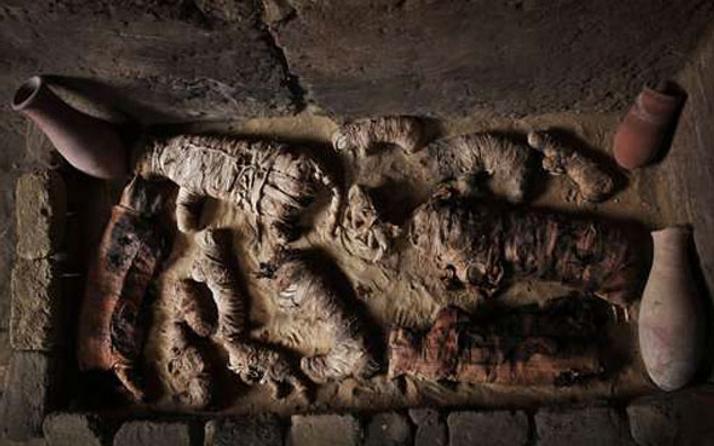 Mısır'da 7 firavun mezarı ve hayvan mumyası keşfedildi