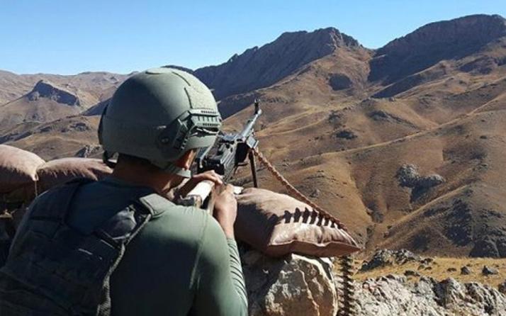 Cudi Dağı'nda 18 PKK'lı teröristi 'eşek arısı' öldürdü
