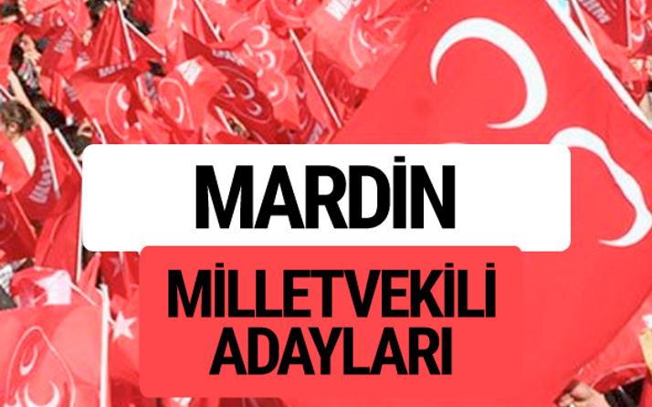 MHP Mardin milletvekili adayları 2018 YSK kesin listesi