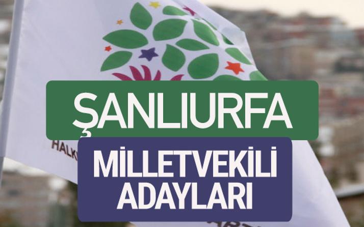HDP Şanlıurfa milletvekili adayları 2018 YSK isim listesi
