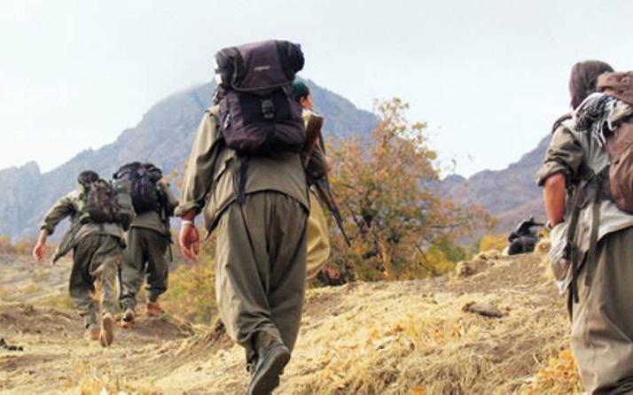 Şok gelişme! Kayıp baba-oğlu PKK öldürmüş