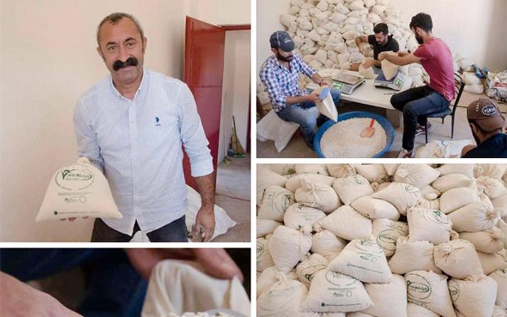 Ovacık'ın Komünist başkanı Mehmet Fatih Maçoğlu hazine arazisini ekip...