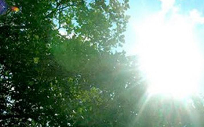 Hafta sonu güneşin tadına varın