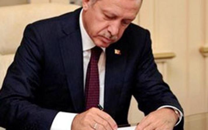 İşte cemaatin cumhurbaşkanı adayı! Erdoğan buldu