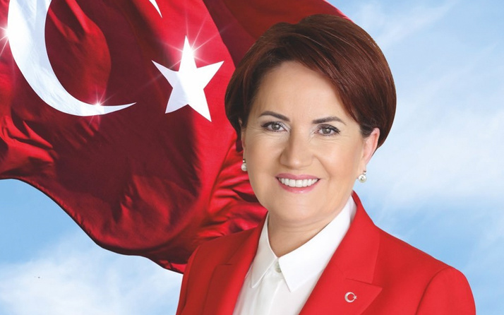 Image result for Meral Akşener