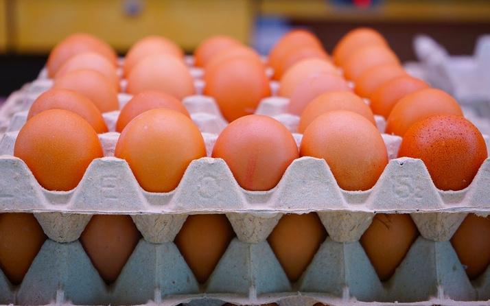 Yumurta kolisi fiyatları 5 liraya kadar düştü