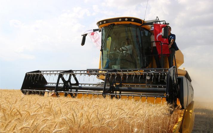 Tarım ve Orman Bakanlığı açıkladı: Buğday ihracatında rekor kırıldı