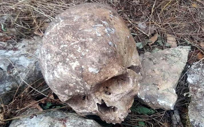Mersin'de ormanlık alanda 2 kafatası ve kemik parçaları bulundu