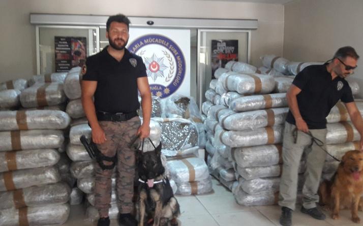 Muğla'da deniz yoluyla Türkiye'ye sokulmak istenen 1.5 ton uyuşturucu ele geçirildi