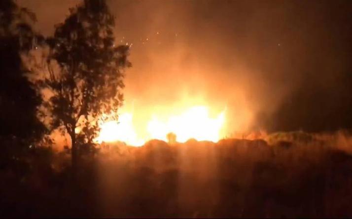 İzmir Foça'da makilik alan yandı! 1 hektar alan küle döndü