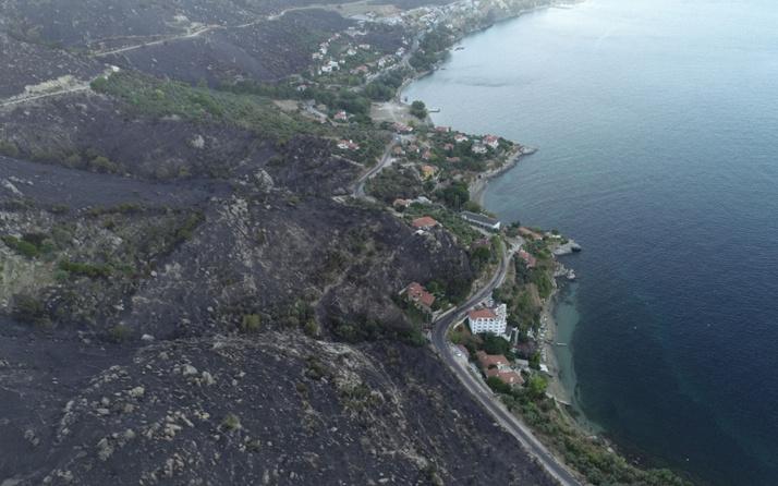 Marmara Adası yangını şüphelileri tutuklandı