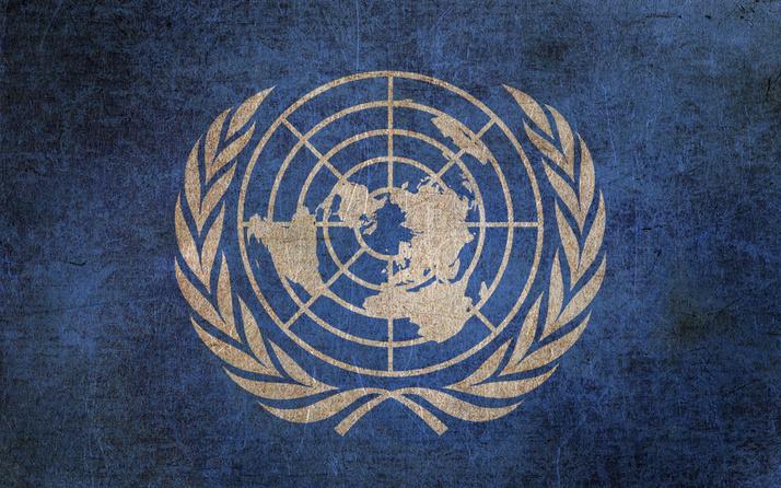 Birleşmiş Milletler'den Suudi Arabistan'a kınama