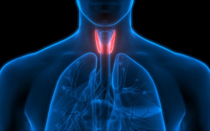 Tiroid normal değeri kaç? Tiroid az çalışırsa kilo aldırır çok çalışırsa zayıflatır