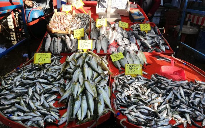 Marmara Denizi'nde denetim! 53 ton balığa el konuldu