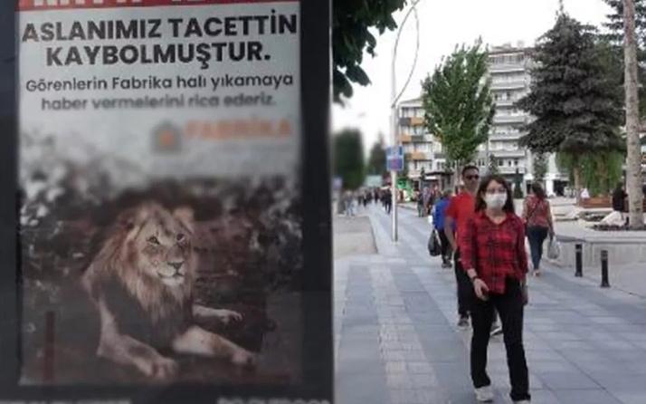 Çorum'u karıştıran ilan: Aslanımız Tacettin kaybolmuştur