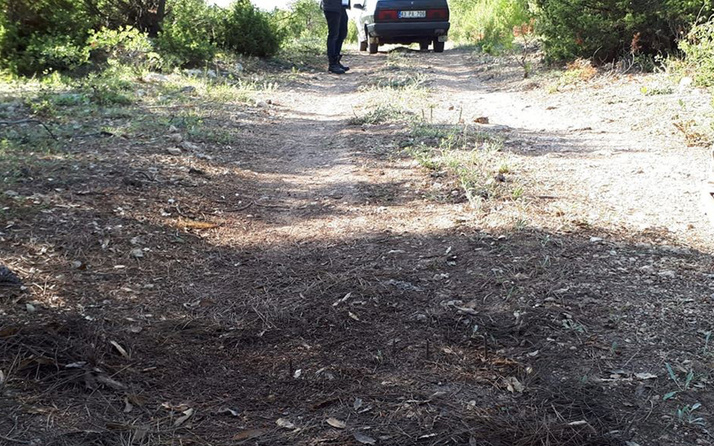 Kütahya'da mantar toplamaya giden vatandaşa 'Ölüm tuzağı' kuruyorlar