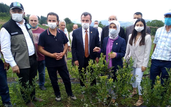 Toprak Bursa Büyükşehir'le bereketleniyor