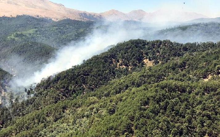 Ormanlık alan yasakları gelmeye devam ediyor 6 ile daha yasak geldi