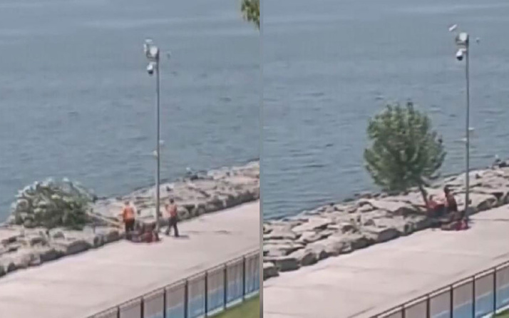 'İBB, Florya sahilindeki ağaçları kesti' iddiası! İBB'den açıklama geldi
