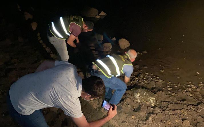 Şırnak'ta kaçak kurbağa avlayan 10 kişiye rekor ceza