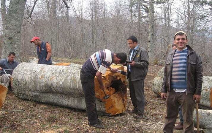 Orman köylülerine müjdeli haber! Kredi faizi kaldırıldı