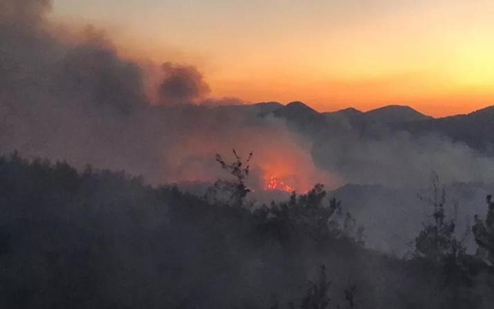 Kozan'daki orman yangını hala kontrol altına alınabilmiş değil