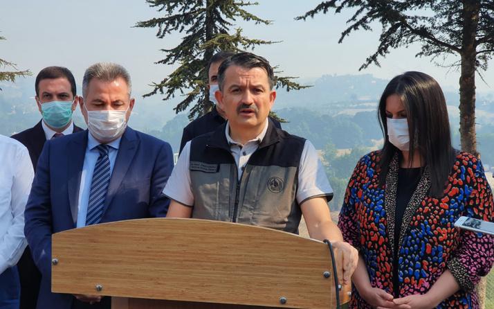 Bakan Pakdemirli: Adana Kozan'daki yangın kontrol altında