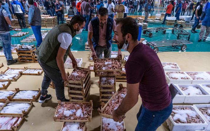 Av yasağı kalktı balıkçılar ağlarını attı, yeni sezon büyük umutlarla açıldı
