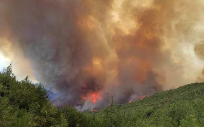 Hatay'da korkutan yangın yerleşim yerlerine yaklaştı