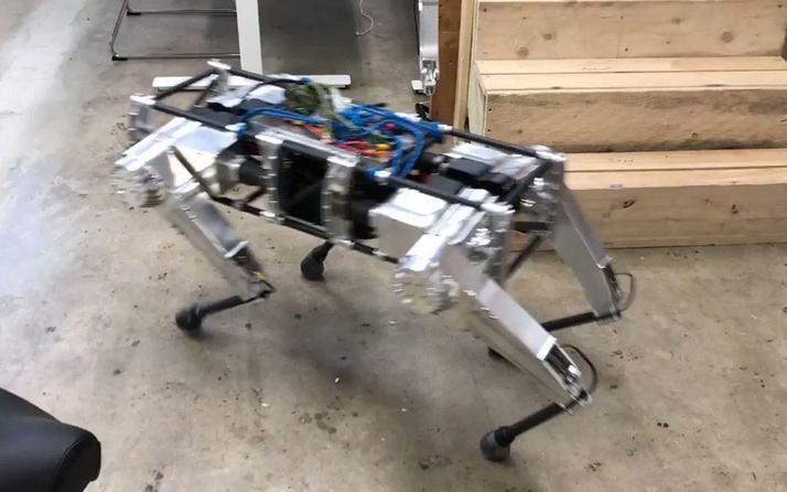 ABD ordusu üs güvenliği için 'robot köpekleri' test etti