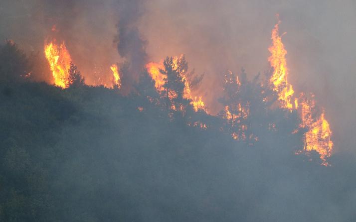 Hatay'da bir günde 4 farklı noktada orman yangını