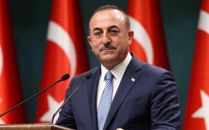 Dışişleri Bakanı Mevlüt Çavuşoğlu, Avusturya halkına 'yanınızdayız' mesajı verdi