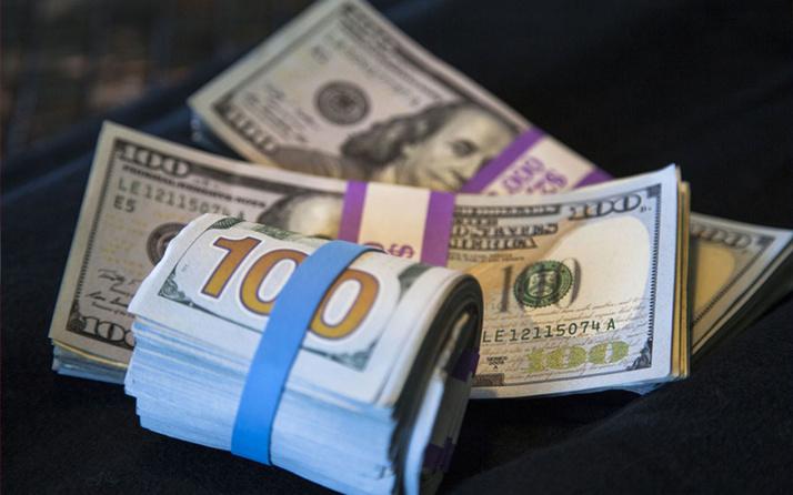 Kamu borcu içinde döviz borcunun payı yüzde 58.3'e yükseldi