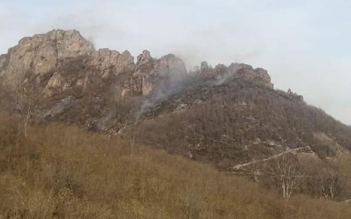 Ordu'daki orman yangını 5 saatte kontrol altına alındı! 20 dönüm alan yandı