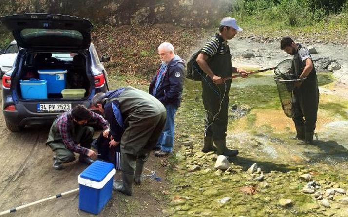 Türk bilim insanları keşfetti! Samsun'da varlığı bilinmeyen 4 yeni parazit türü keşfetti