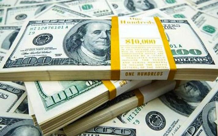 Döviz hesapları 235 milyar doları aşarak rekor kırdı